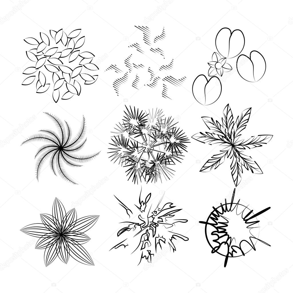 Set Image Of Top View Plants For Drawing In Landscape Design Stock Vector