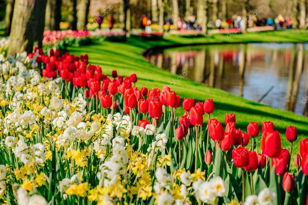 Imagenes De Paisajes De Primavera: Paisajes De Primavera Hermosos