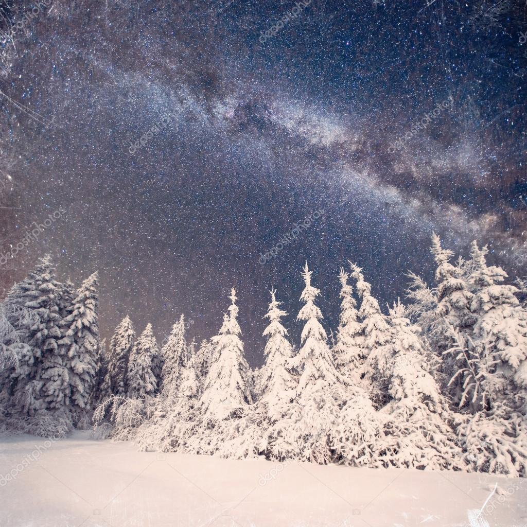 magic tree in starry winter night. Vintage effect