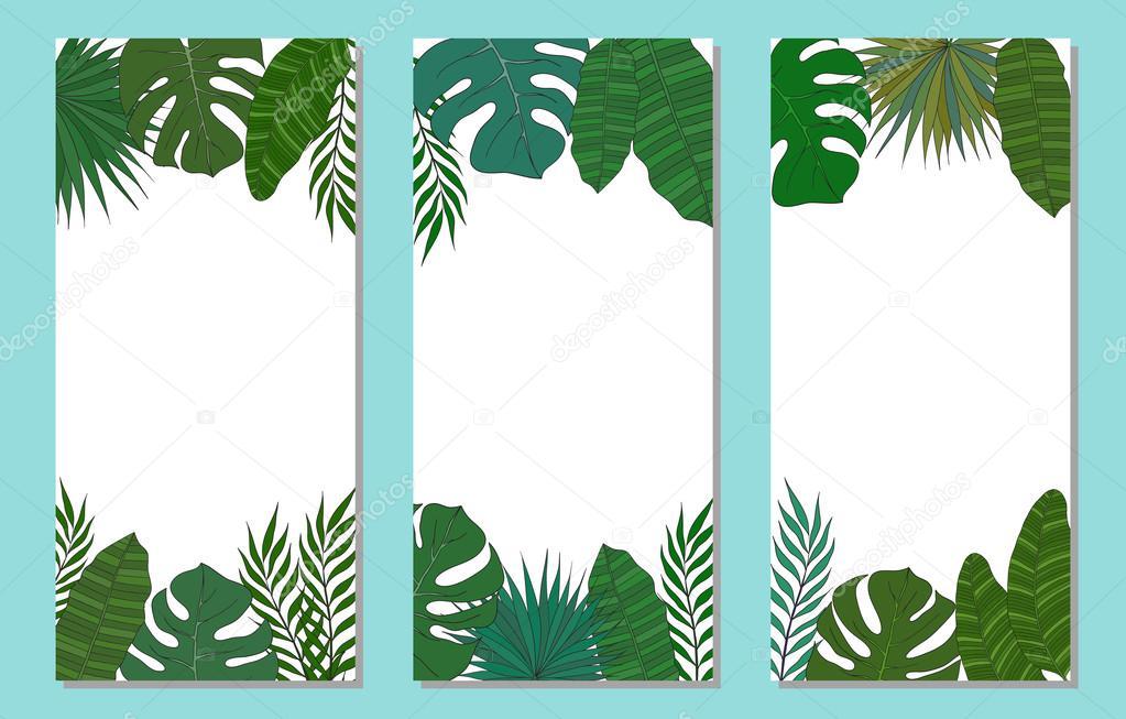 Marco vertical de palmera hojas. Tarjeta tropical o banner — Archivo ...