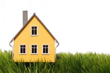 Tiny house on green grass, isolated