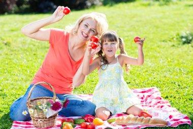 Family having picnic in summer park