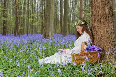 Victorian woman in white dress in a springtime bluebells forest stock vector