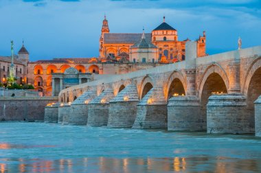 Roman Bridge and Mosque of Cordoba at night (Spain)