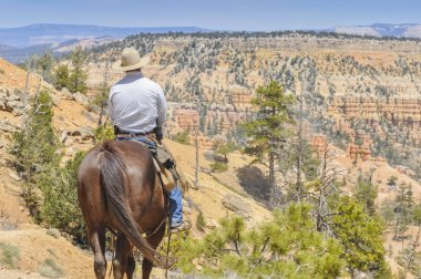 Cowboy in Bryce Canyon national park (USA)