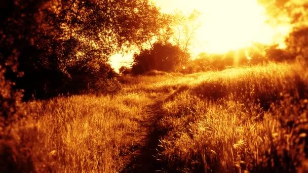 Weg in die ländliche Sonne