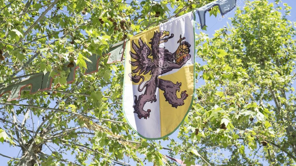 shield, medieval coats of arms in a traditional ancient art fair