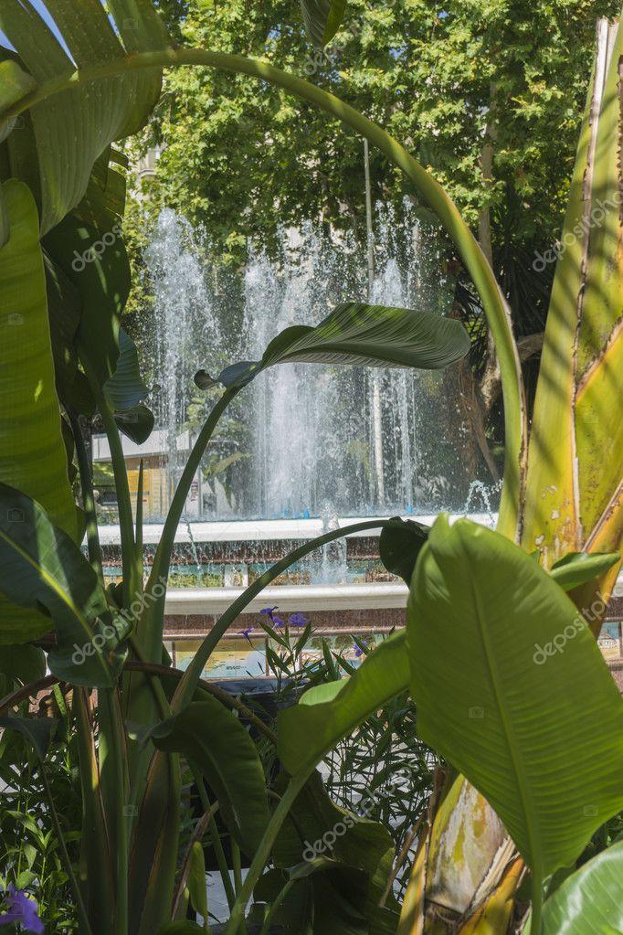 summer gardens in Marbella