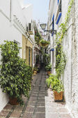 Fotografie Traditional Andalusian streets with flowers