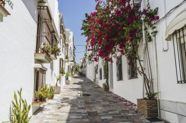 Andalusian streets and balconies with flowers