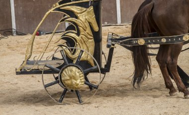 horses and chariots of Roman gladiatorial fights, representation