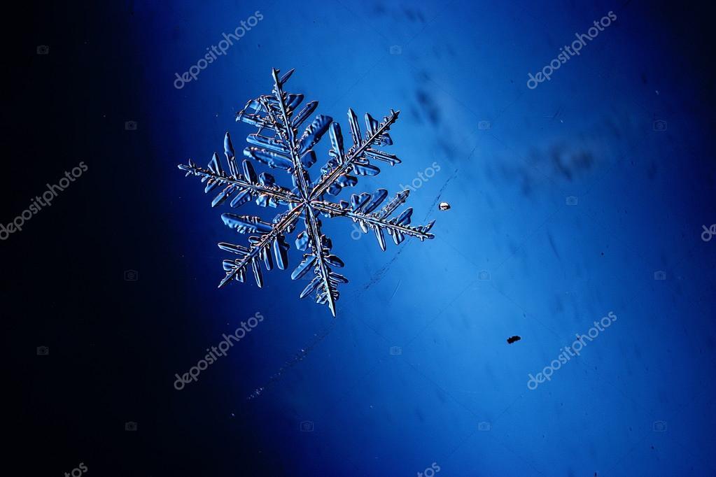 Fiocchi Di Neve Di Carta Facili : Fiocco di neve di cristallo naturale u foto stock xload