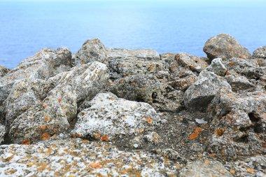 Cliff rocks on coast