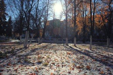 Late autumn park
