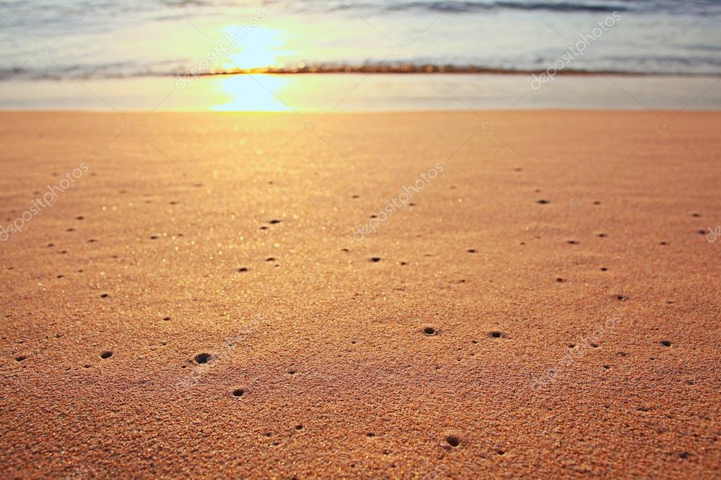 Surf on sunset beach