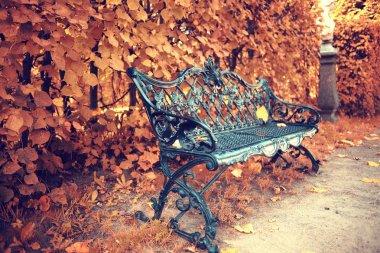bench at city park