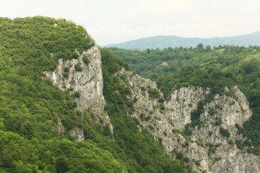 European nature landscape