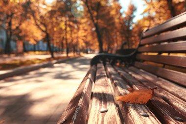autumn urban landscape