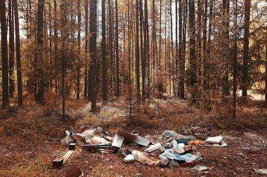 garbage dump in the woods