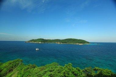 background landscape sea shore