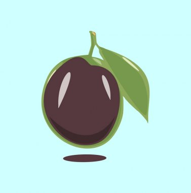 Ripe plum with green leaves on white vector illustration icon
