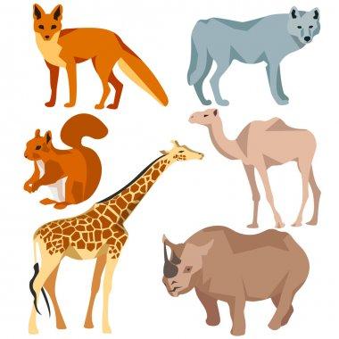 Set Isolated different animals fox, wolf, giraffe, protein, camel, rhinoceros
