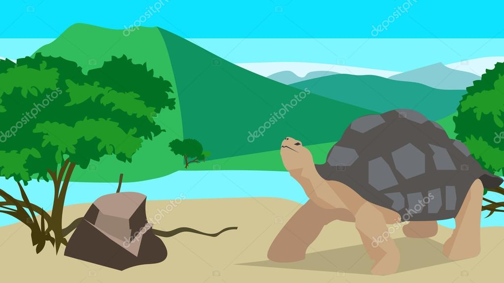 Tortoise near the river, seamless, animal and nature