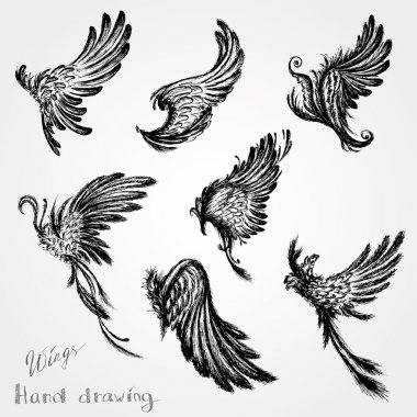 Set Wings, vector