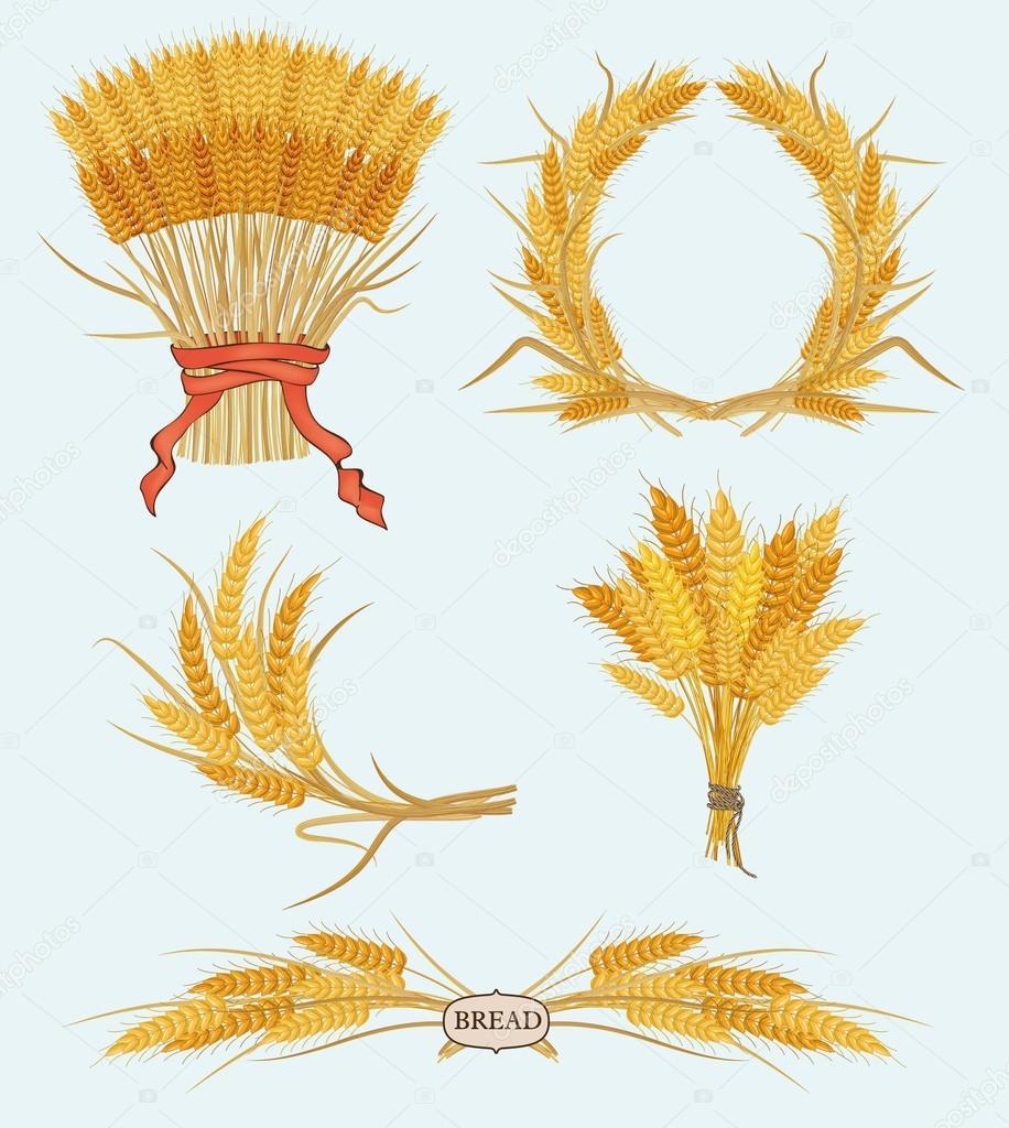 Открытки из колосьев пшеницы, день города кемерово