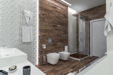 modern design of a bathroom