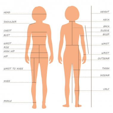 Body measurements size chart