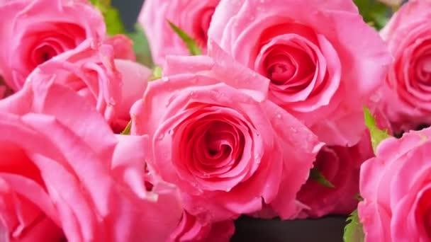 Rózsák. Virágos háttér. Rózsaszín rózsák