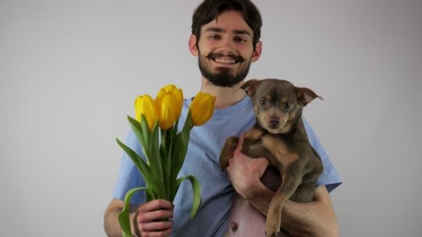 Egy helyes srác virágcsokrot tart a kamerának és egy kutyát, mosolyog. A fickó ad egy csokor sárga tulipánt és csivavát. 4K