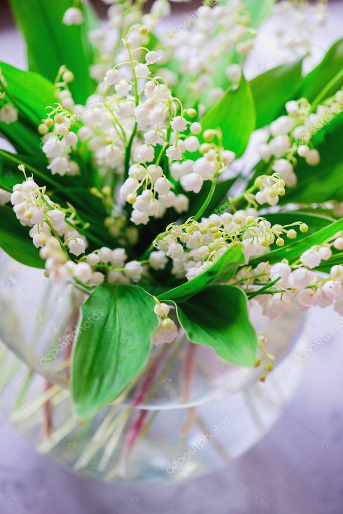 ein Bouquet von kleine weiße Blume Lilie der Senke — Stockfoto ...