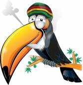 Fotografie jamaikanische Tukan Cartoon isoliert auf weiss