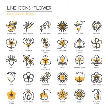 Flower, thin line icons set , Pixel perfect icons