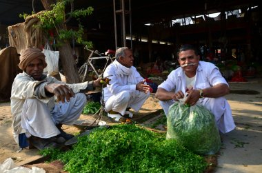 Jodhpur, India - January 1, 2015: Unidentified Indian man sellin