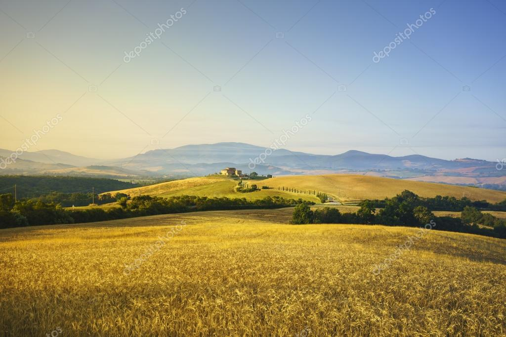 Фотообои Tuscany spring, rolling hills on sunset. Rural landscape. Green