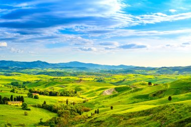 Tuscany, rural sunset landscape. Countryside farm, cypresses trees, green field, sun light and cloud. Volterra, Italy, Europe. stock vector
