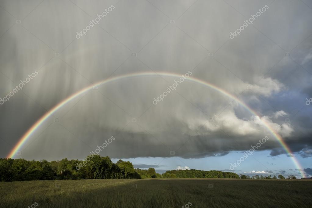 Regen En Zonneschijn : Vroege vogels foto weer en landschap na regen komt zonneschijn
