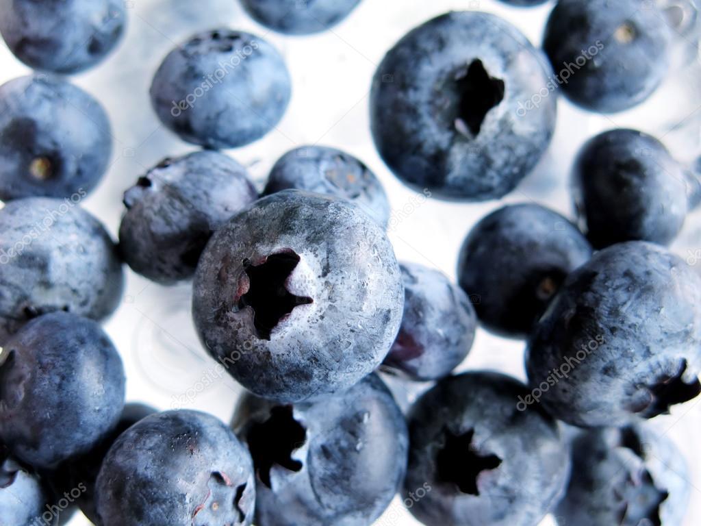 Fresh Ripe Blueberries