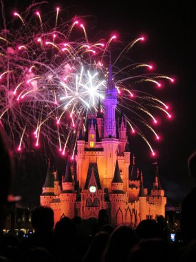 The famous Wishes nighttime spectacular fireworks at the Disney Magic Kingdom Castle in Orlando, Florida