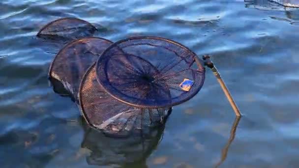 akrů s rybami