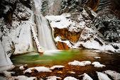 vodopád v lese v zimě