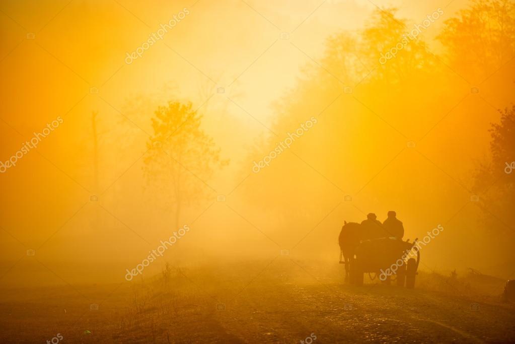 autumn landscape on foggy morning on field