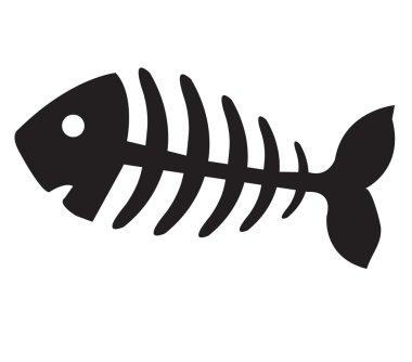 fish bone, fish skeleton