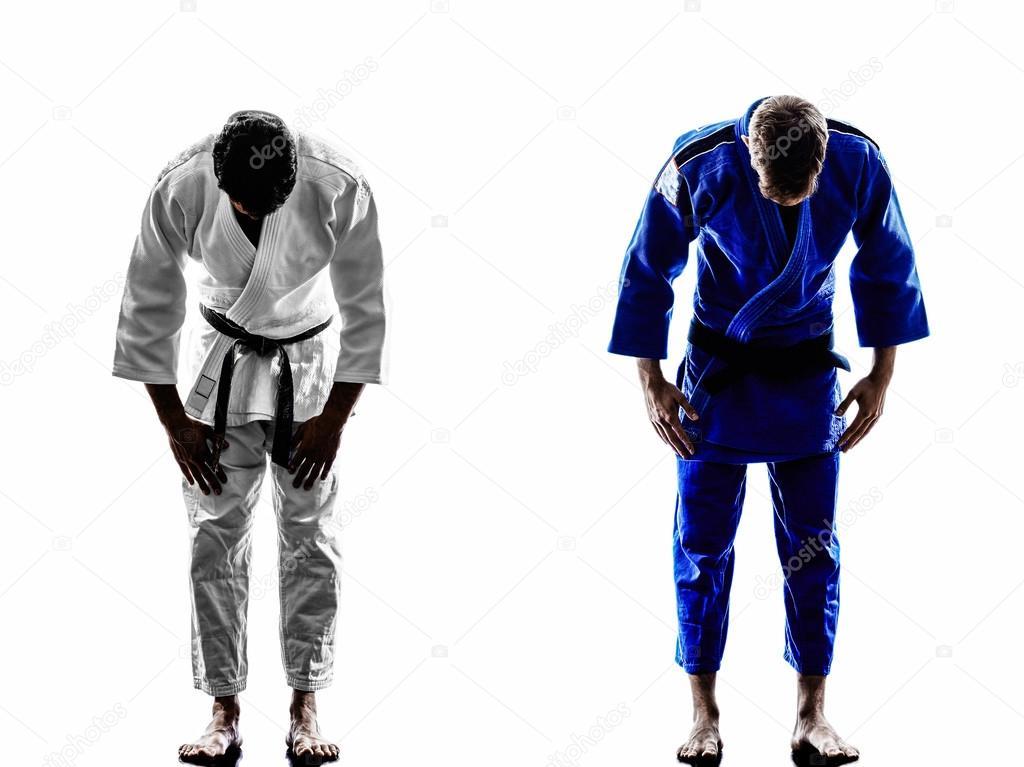 Áˆ Judo Stock Photos Royalty Free Judo Animated Download On Depositphotos
