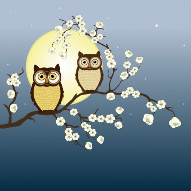 Pair of owls on branch in night