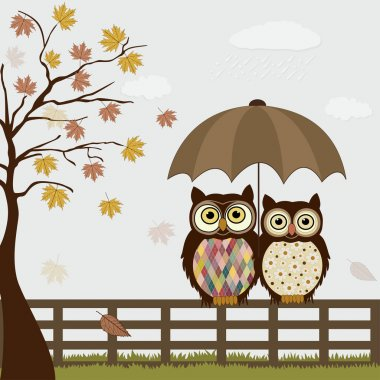 Cute owls on a fence in autumn