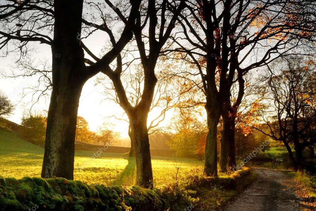 Autumn at Wycollar - England - UK